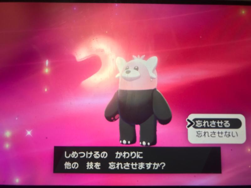 2020.01.26 【オレのポケモン日記】 #006