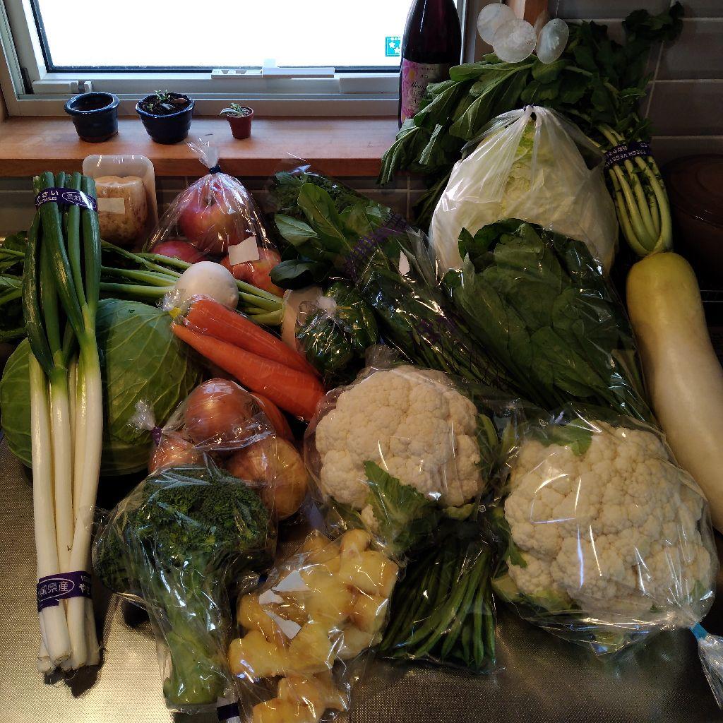 #36 今週のお野菜