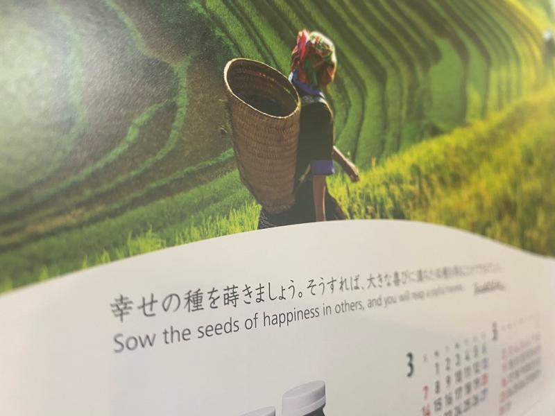 #223 4月は種まき強化月間とします