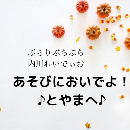 【その29】私的できごとベストテンin2020(1)