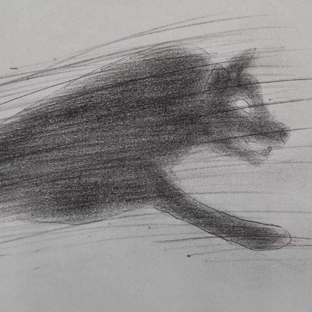 動物物語 狼の王ロボ アーネスト・トムソン・シートン
