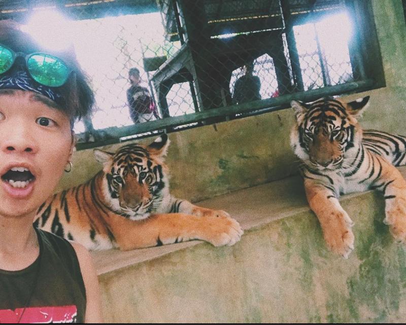 【海外体験談】タイの動物園でスタッフと喧嘩した話