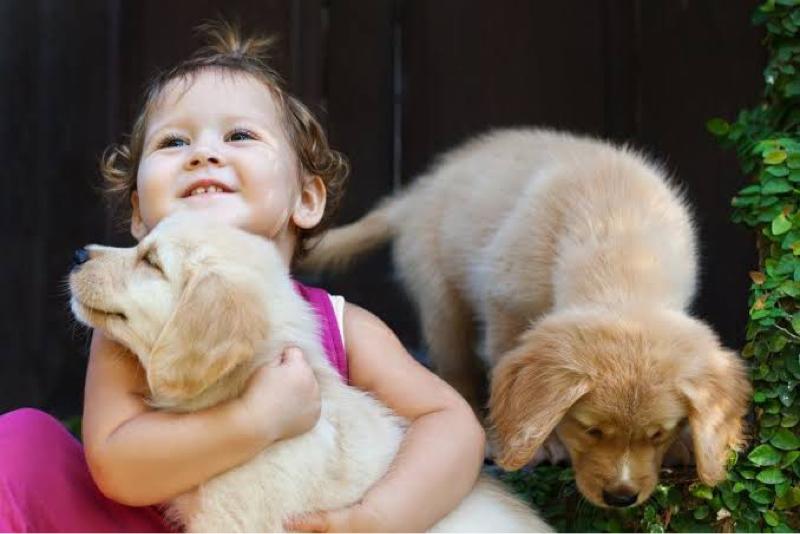 【朝ラジ続き】ペットが与えてくれる恐るべき力‼️