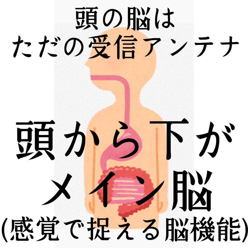 ♋️220:自閉症スペクトラムは消化器官が弱い
