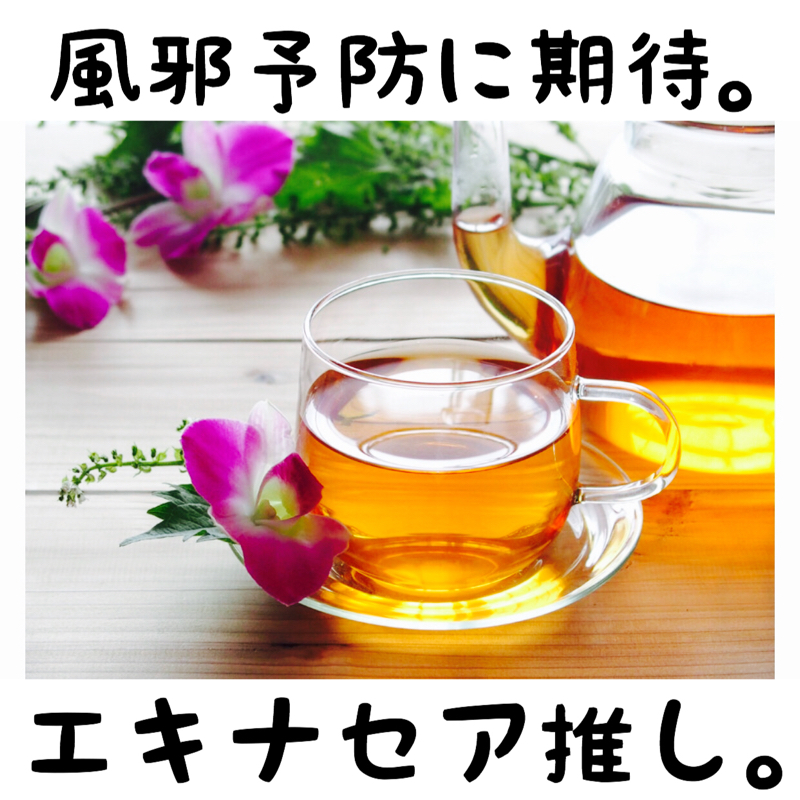 ♋️140:結局エキナセアというハーブ茶を推したいだけの話
