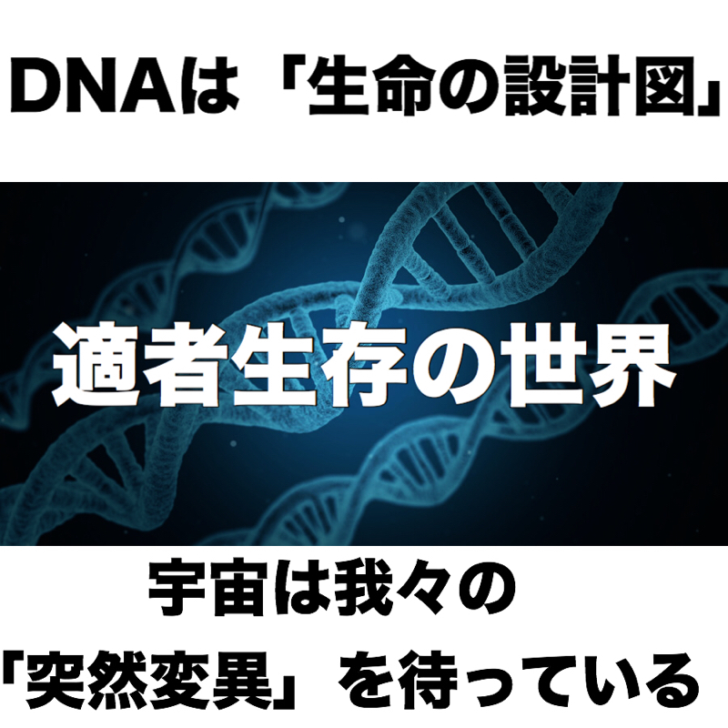 ♋️147: DNA