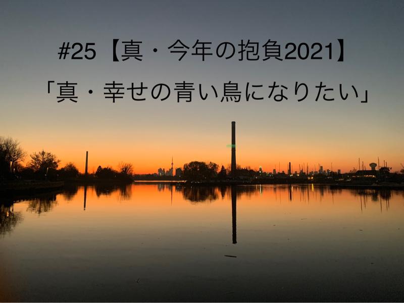 #25 【真・今年の抱負2021】
