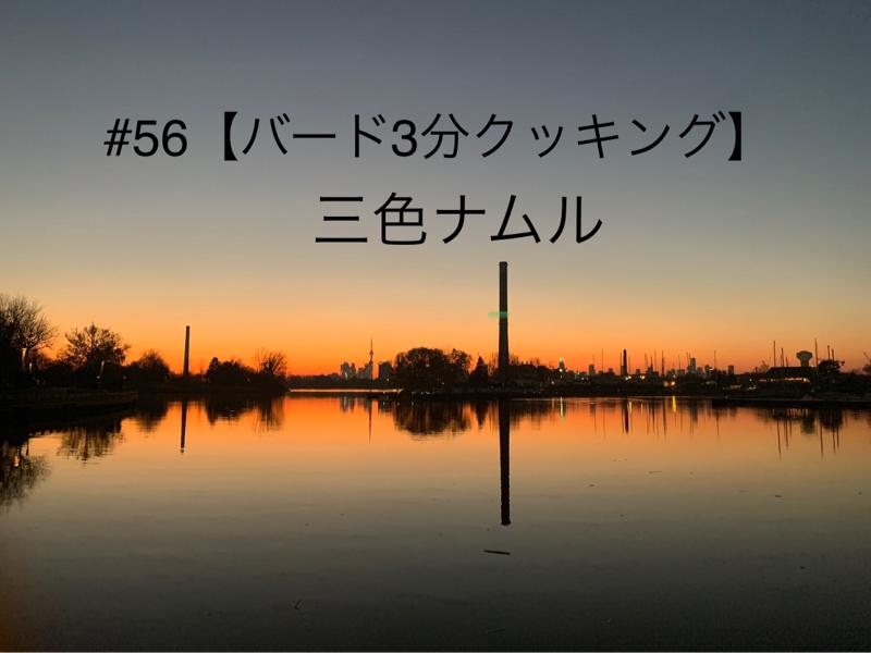 #56👨🏻🍳【もやしの三色ナムル】