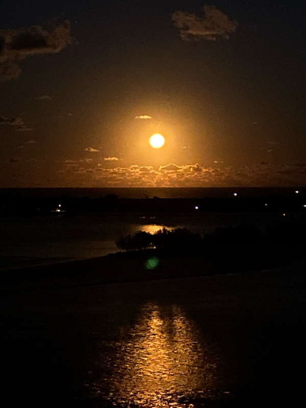 満月の夜に🌕