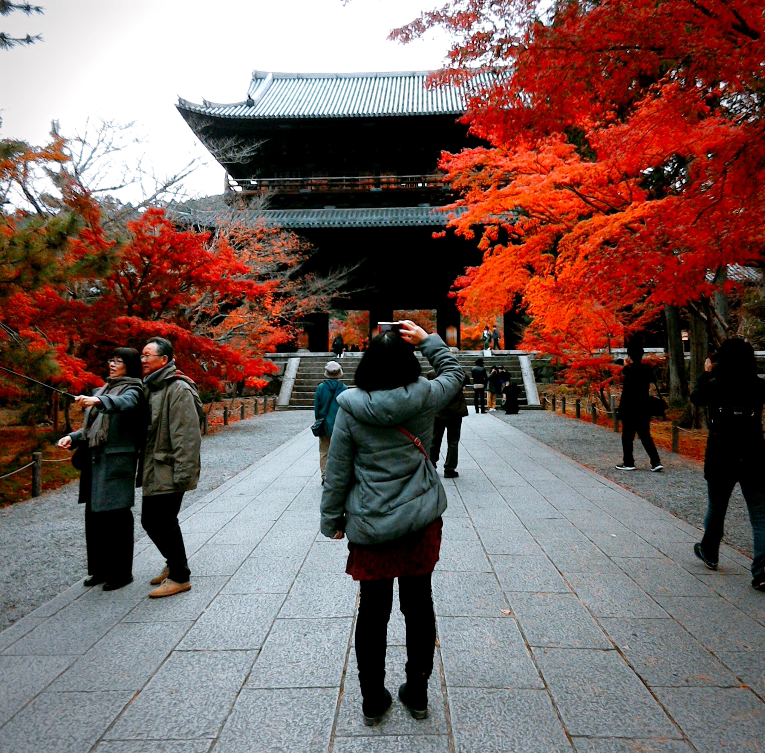 #11 朝散歩、紅葉の南禅寺