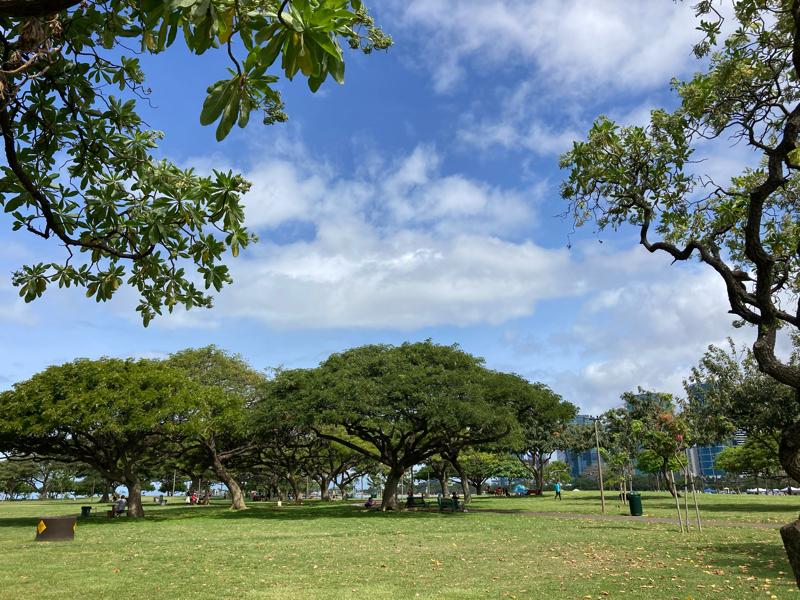 #64 ハワイから偲ぶ心、徒然に。
