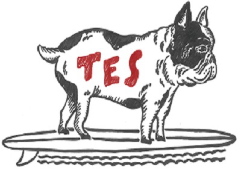 tEsの自己紹介