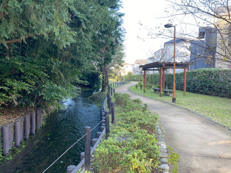 朝ラン19℃。照れくさい内容とラジオで旅気分、第5回福井〜峠をいくつも越えて到達した永平寺。#180