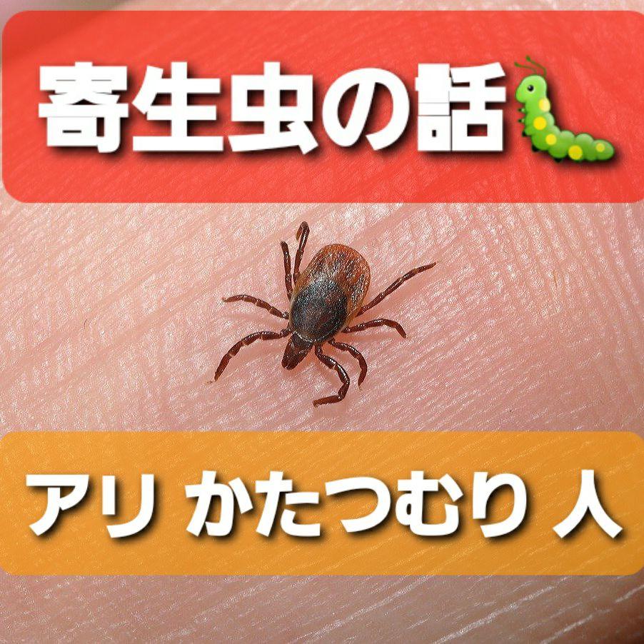 【寄生虫の話🐛】アリ・カタツムリ・人間に寄生😱
