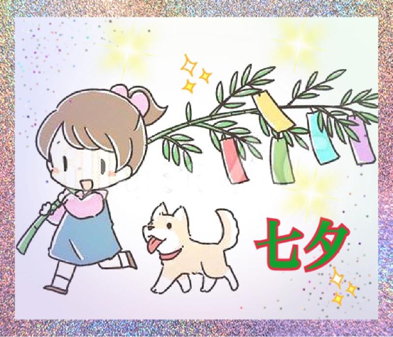 愛犬との生活
