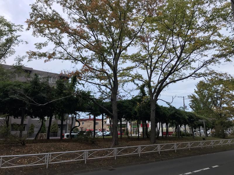 風たびRCの旅ラントーク【伏古公園&パープルロード】