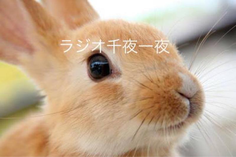 #024「藤子・F・不二雄先生の誕生日」