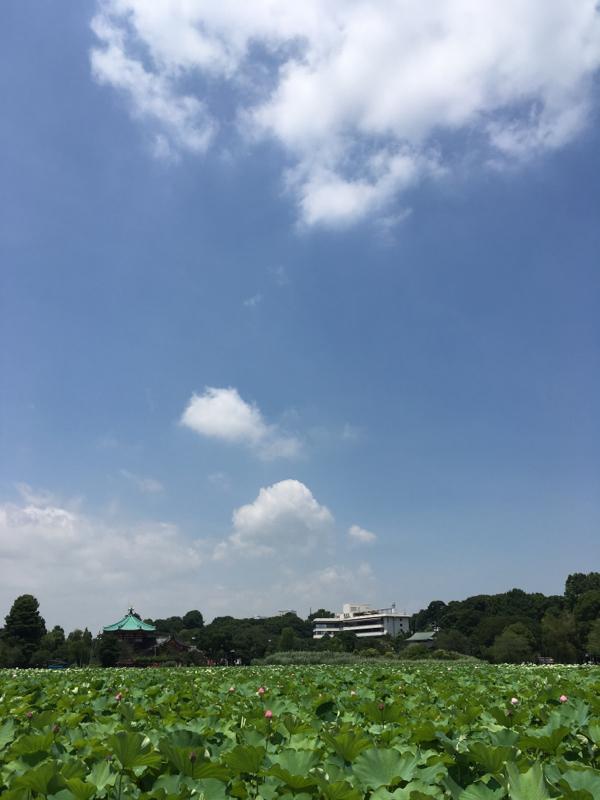 #003 射手座新月のお話 後編
