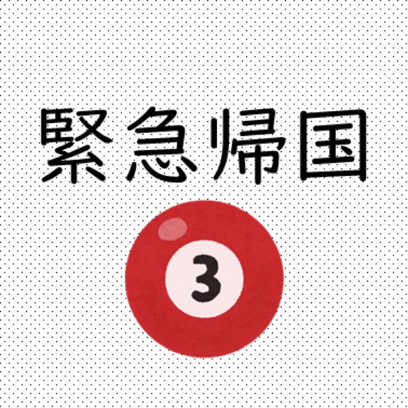 #172  緊急帰国(3):病院到着→車いす→血液検査→WBC→薬→「どうすれば良いですか?」