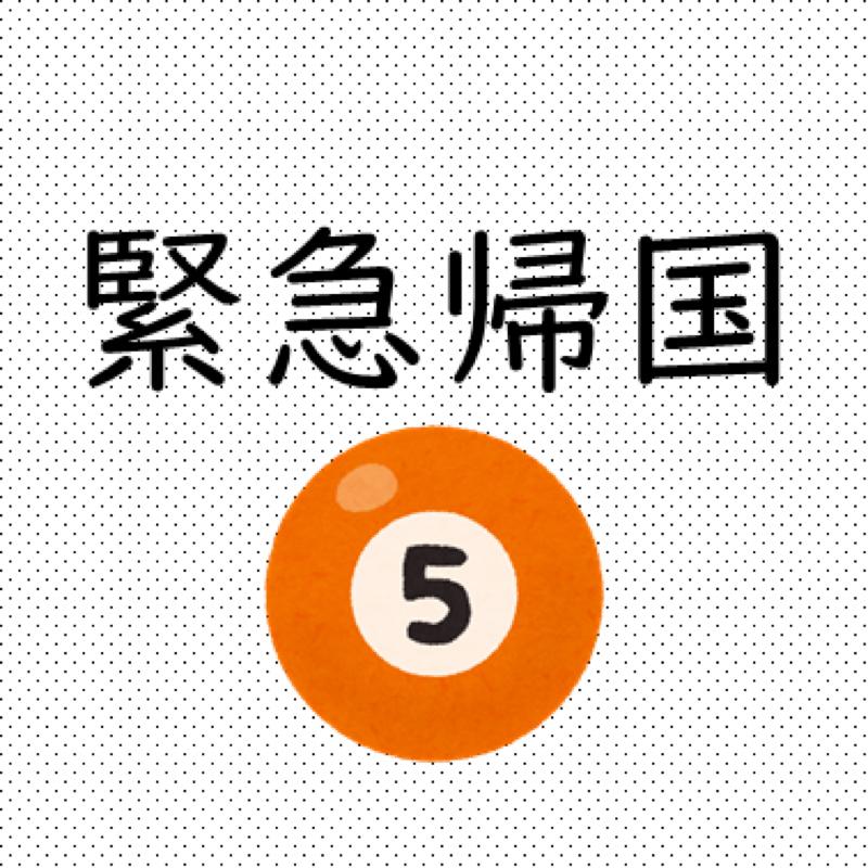 #177  緊急帰国(5):ベッドで寝転びながら帰国便を探す/シェムリアップ→広州→関西空港