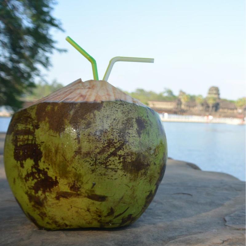 #184 カンボジア二人旅(1):「えっ?二人旅?」/たっちゃん、怪しい/Kちゃん、可愛い♡/