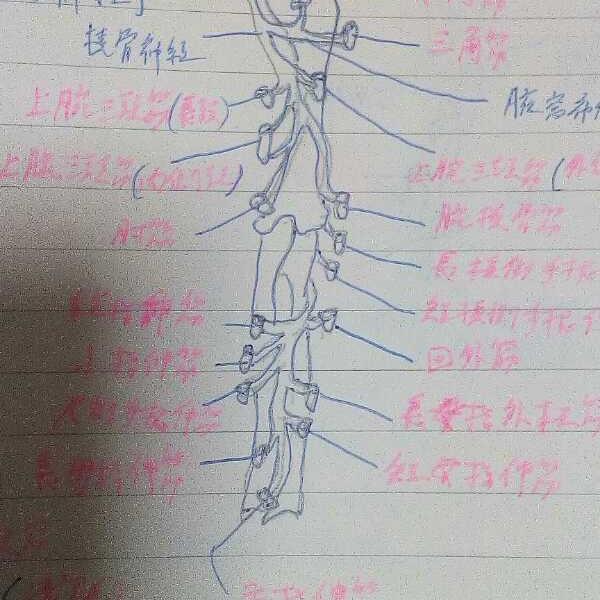 必殺仕掛人 藤枝梅安 朗読 1