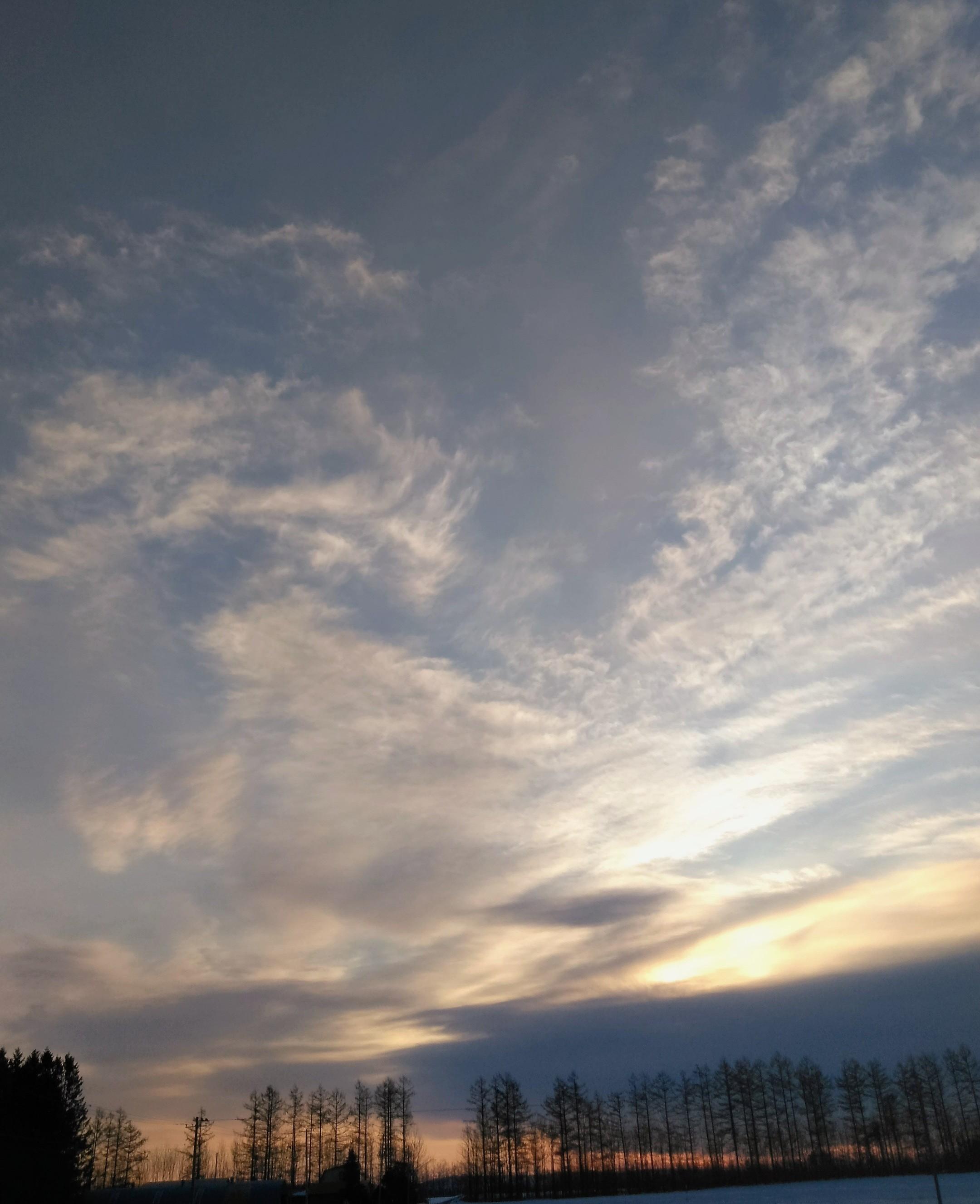 ポエム「2月の朝」