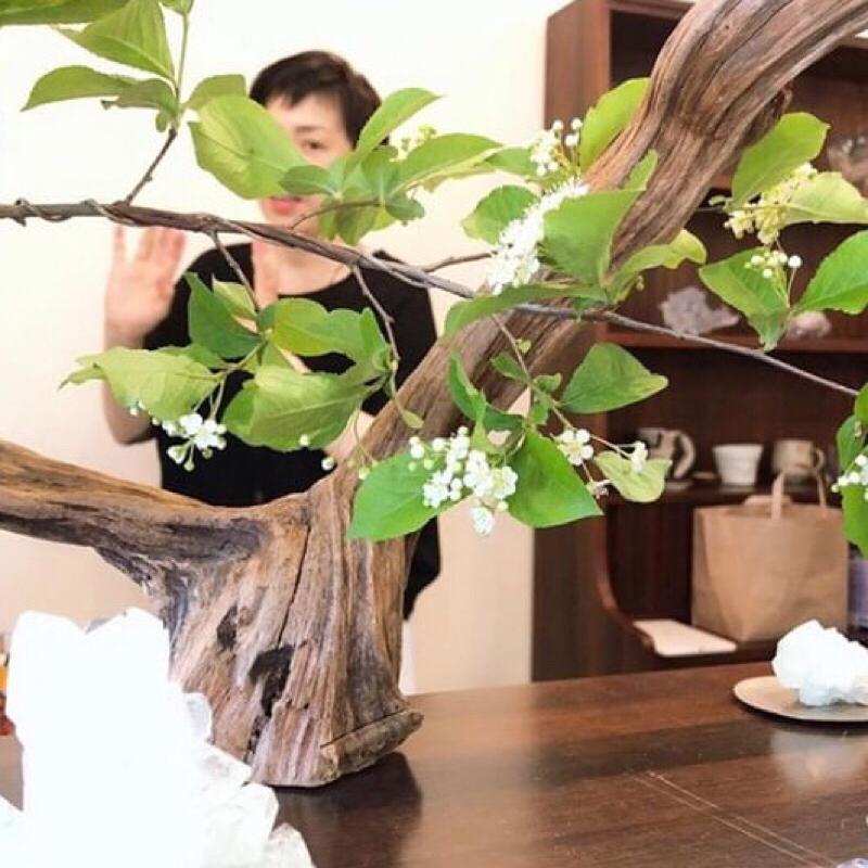 #7-1 東京でのセッション/ 自分のエネルギーを基準にして物事を選択する