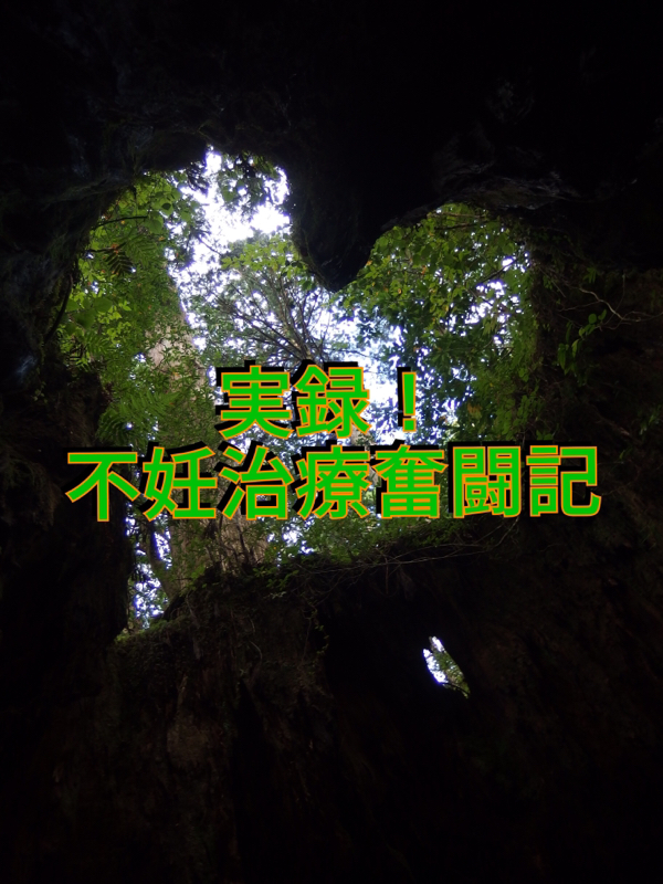 実録_不妊治療奮闘記