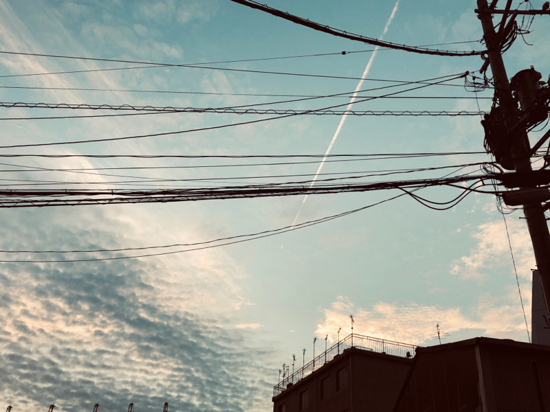 田中の第1回目✨聞いて聞いて|*・ω・)チラッ