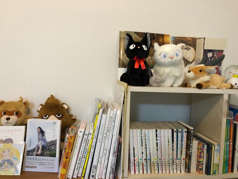 キュンキュンキュンキュンできて宝探し感覚になれるセレンディピティな本棚にしたい