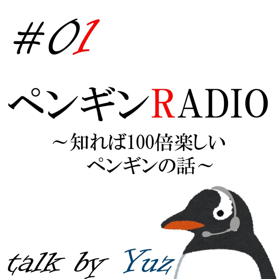 #01 「ペンギンはみんな南極にいる」は誤解‼