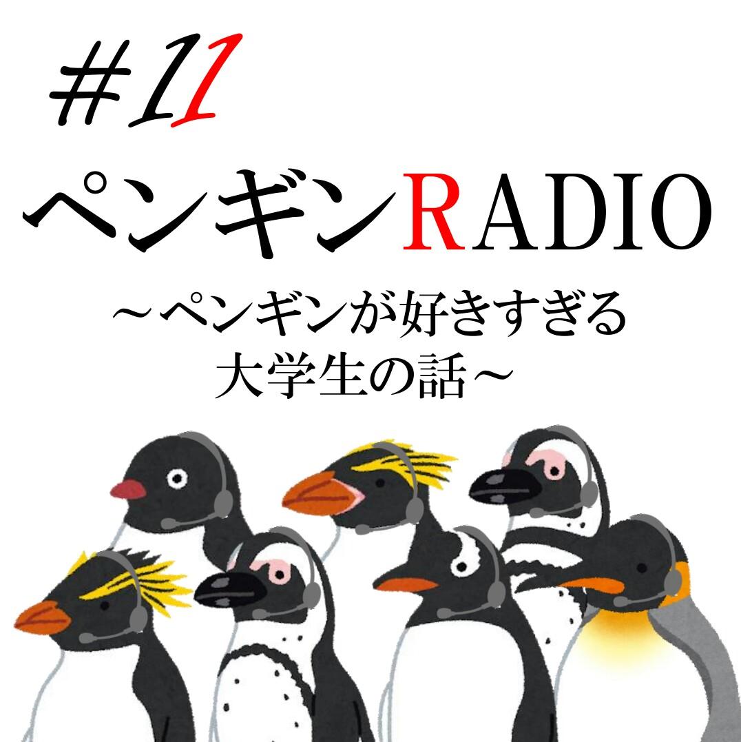 #11 【水族館紹介】シーパラはペンギンパラダイス!
