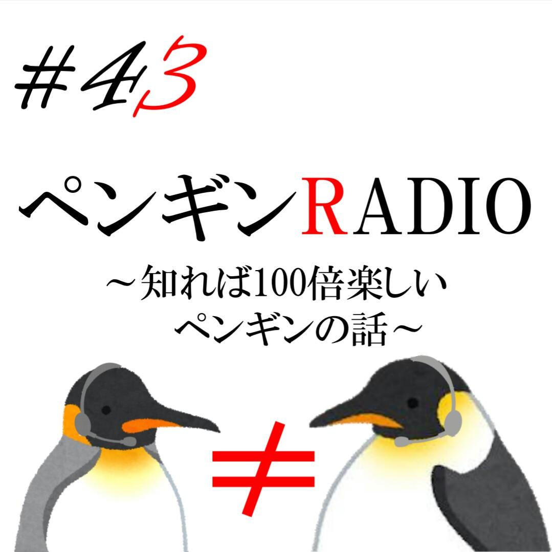 #43【激おこペンペンギン】コウテイとキングを間違えるな‼