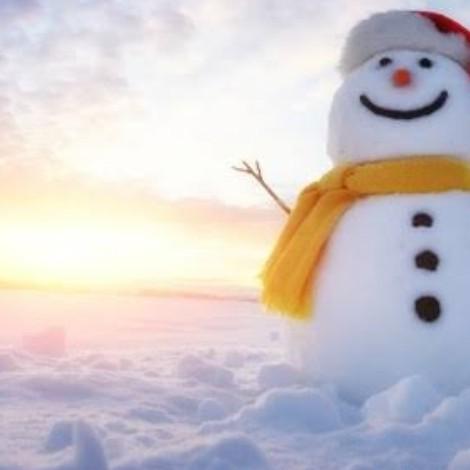 ようやく冬らしくなってきた??