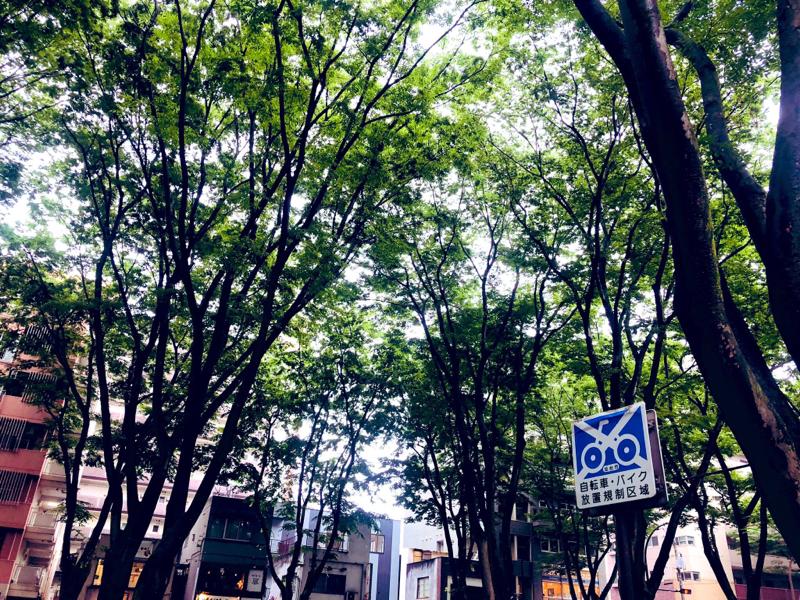 #21 宮城でスポーツ観たい