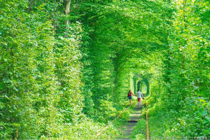 第3便✈️ウクライナ「恋のトンネル」