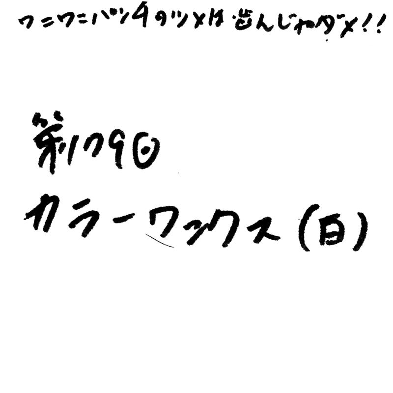 第179回 カラーワックス (白)