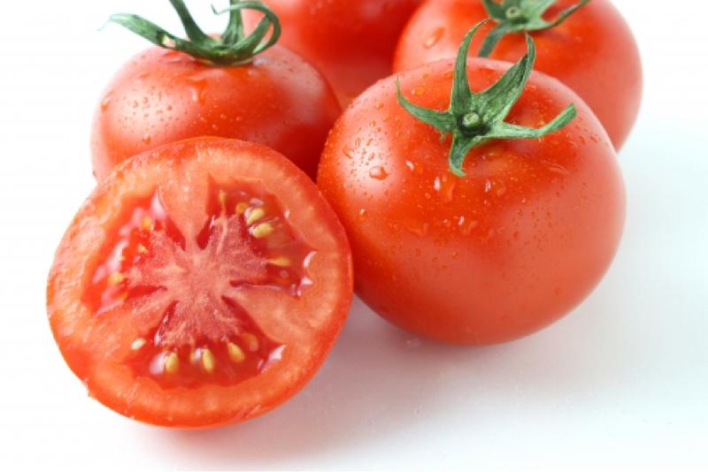 【第41回】トマトの育て方〜植えつけたあとの話〜