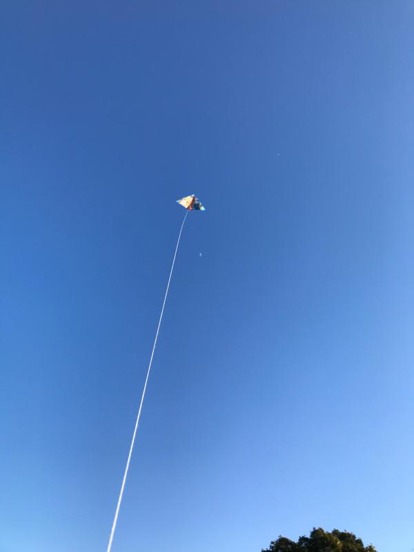 第六回 アメリカの空は青かった