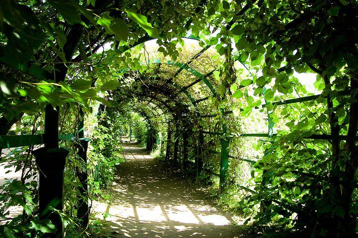 #9 英国庭園の謎/有栖川有栖