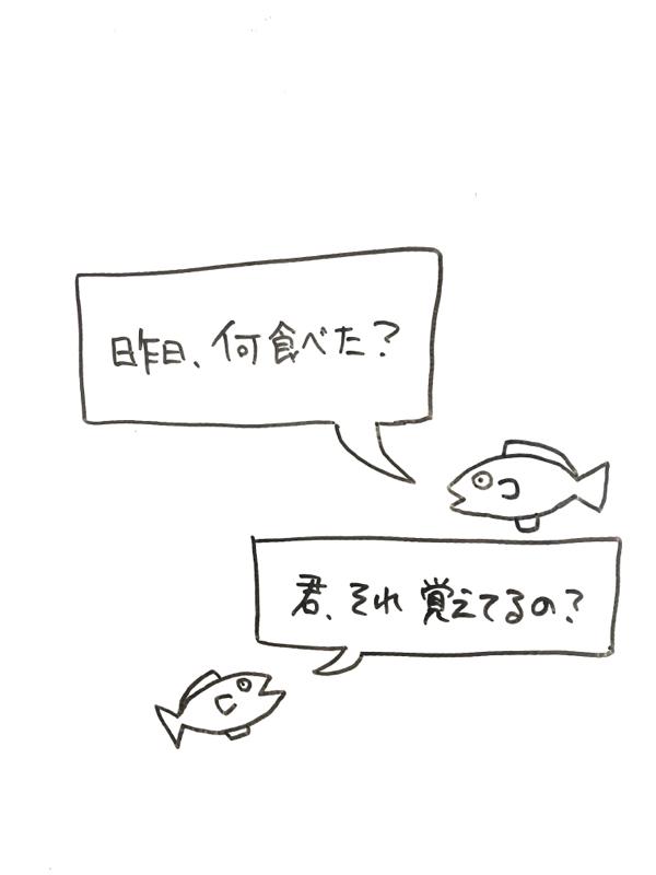 #99 最先端な水族館