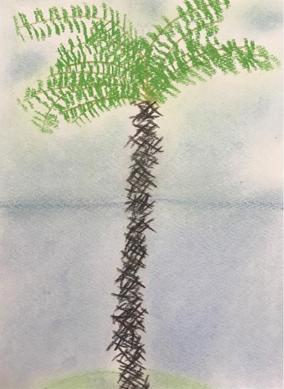 🌳木陰の会🌳第1回
