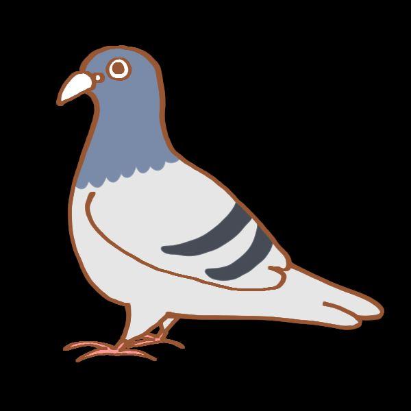 鳩がやっと進化してきた/ワイヤレスイヤホン